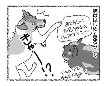 羊の国のラブラドール絵日記シニア!!「未知との遭遇チェイス編」3