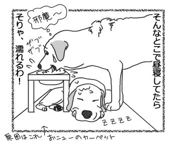 羊の国のラブラドール絵日記シニア!!「だからか!」3