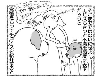 羊の国のラブラドール絵日記シニア!!「取り越し苦労クイーン」3