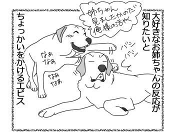 羊の国のラブラドール絵日記シニア!!「マジで怒られる3秒前」2
