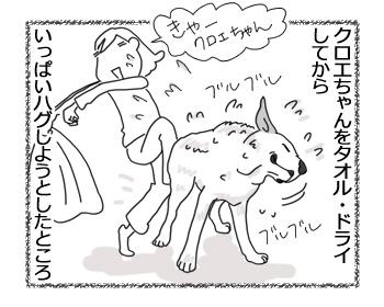 羊の国のラブラドール絵日記シニア!!「夢であえても」3