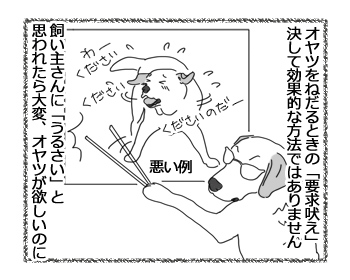 羊の国のラブラドール絵日記シニア!!「飼い主のしつけ方教室」2