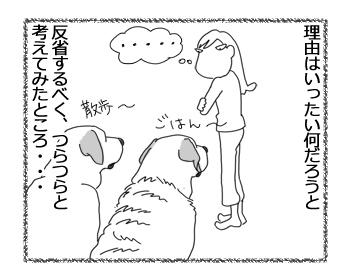 羊の国のラブラドール絵日記シニア!!「クロエちゃんのせいだ」2