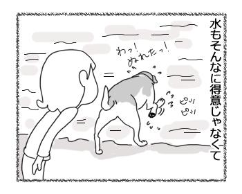 羊の国のラブラドール絵日記シニア!!「チェイスのあれこれ」6