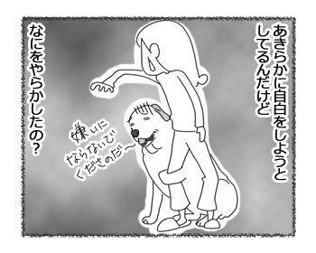 羊の国のラブラドール絵日記シニア!!「職務質問」2
