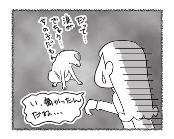 羊の国のラブラドール絵日記シニア!!「おねだりスポ根物語」3
