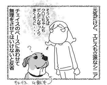 羊の国のラブラドール絵日記シニア!!「水を得たエビスくん」2