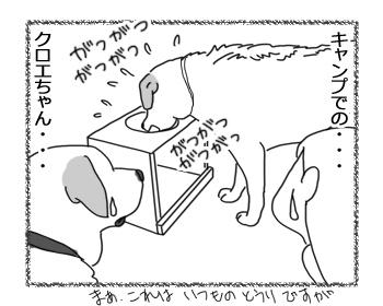 羊の国のラブラドール絵日記シニア!!「キャンプでのクロエちゃん」2