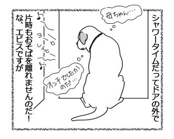 羊の国のラブラドール絵日記シニア!!「ちょっとした小芝居」2