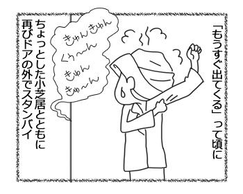 羊の国のラブラドール絵日記シニア!!「ちょっとした小芝居」5
