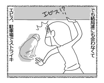 羊の国のラブラドール絵日記シニア!!「グレてやるのだ」4