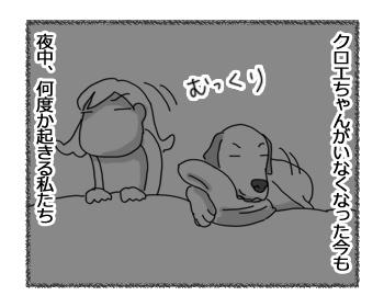 羊の国のラブラドール絵日記シニア!!「長い夜」1