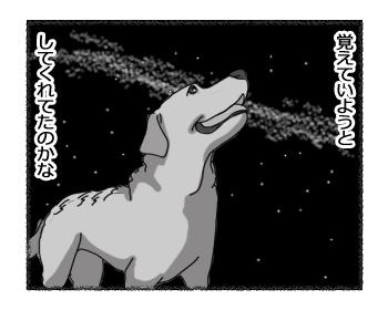 羊の国のラブラドール絵日記シニア!!「長い夜」5