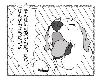羊の国のラブラドール絵日記シニア!!「なでなで相場」3