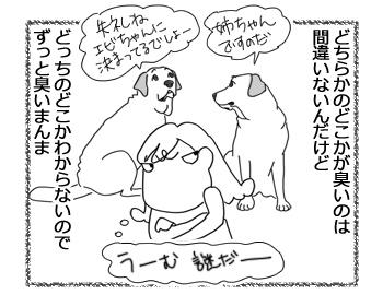 羊の国のラブラドール絵日記シニア!!「犯人探し」4