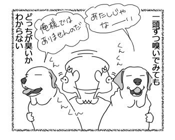 羊の国のラブラドール絵日記シニア!!「犯人探し」2
