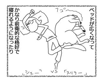 羊の国のラブラドール絵日記シニア!!「少しずつ」2