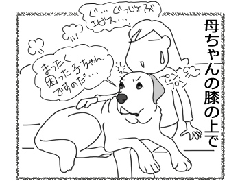 羊の国のラブラドール絵日記シニア!!「説得力の欠如」4