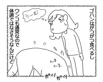 羊の国のラブラドール絵日記シニア!!「教えて!エビス!」3