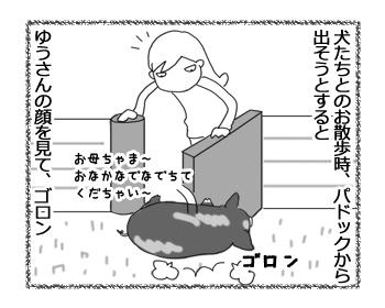 羊の国のラブラドール絵日記シニア!!「妹のお願い」2