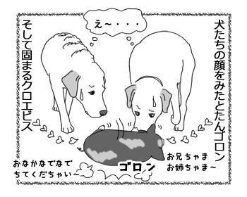 羊の国のラブラドール絵日記シニア!!「妹のお願い」4
