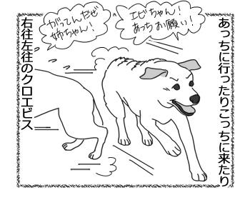 羊の国のラブラドール絵日記シニア!!「右往左往」2