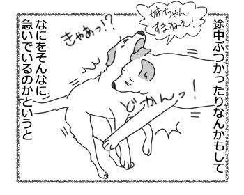 羊の国のラブラドール絵日記シニア!!「右往左往」3