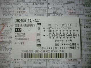 IMGP1329.jpg