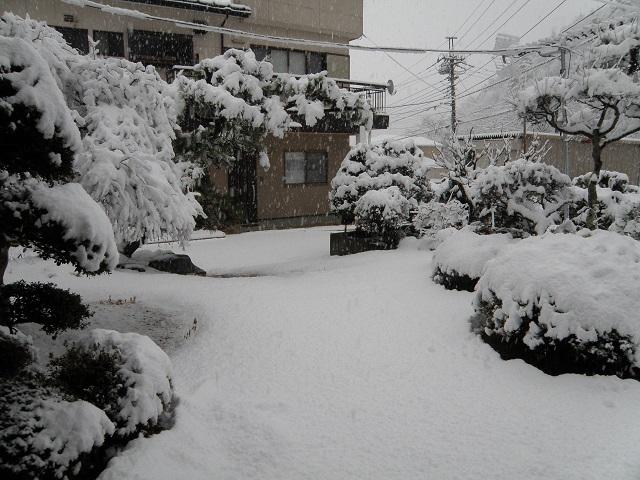 yuki115.jpg