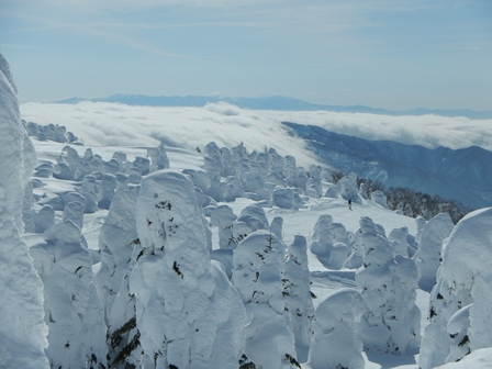 スキー日和のライザ