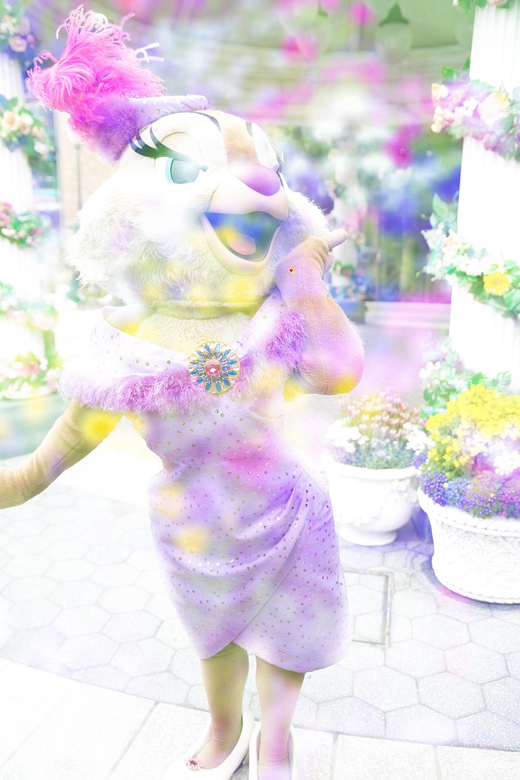 お花とクラリス1