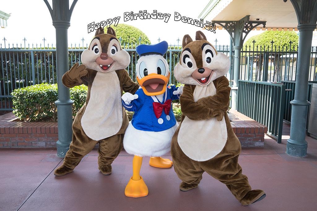 Donald Fauntleroy Duck!!1