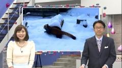 久冨慶子アナのパンツ透け透け画像6