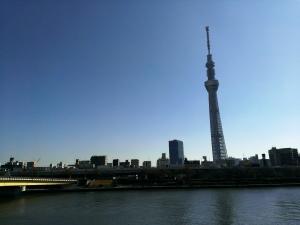 隅田川沿いから臨む東京スカイツリー