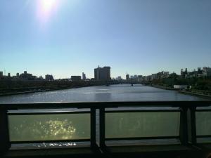 桜橋から臨む隅田川