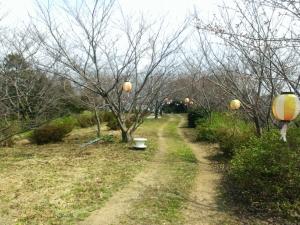 お船頭山の公園