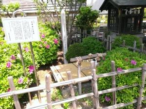 近藤勇産湯の井戸