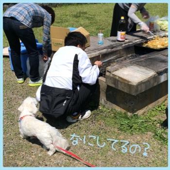 fc2blog_20150523213741560.jpg