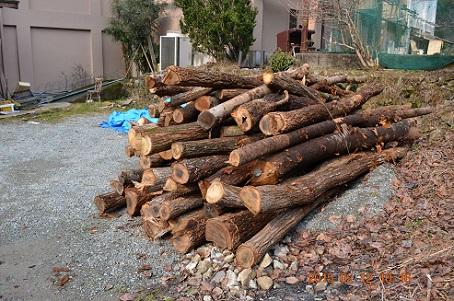 薪ストーブ用の原木