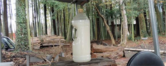 とぎ汁乳酸菌
