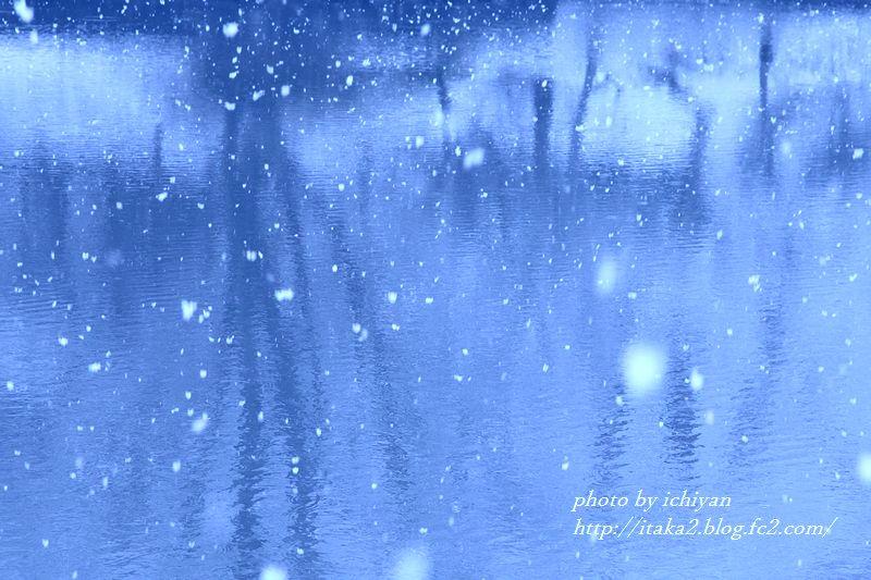 20110214用作公園雪景色 030