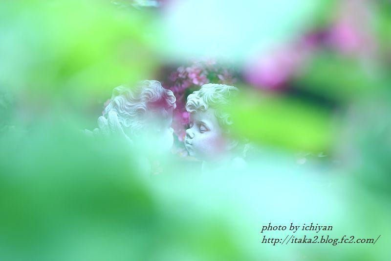 IMG_0987.jpg