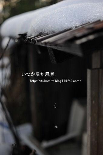 DS7_4634i-ss.jpg