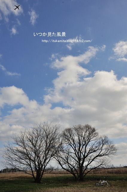 DS7_4776rri-s.jpg