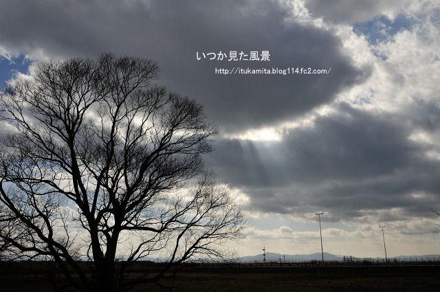 DS7_4798ri-s.jpg
