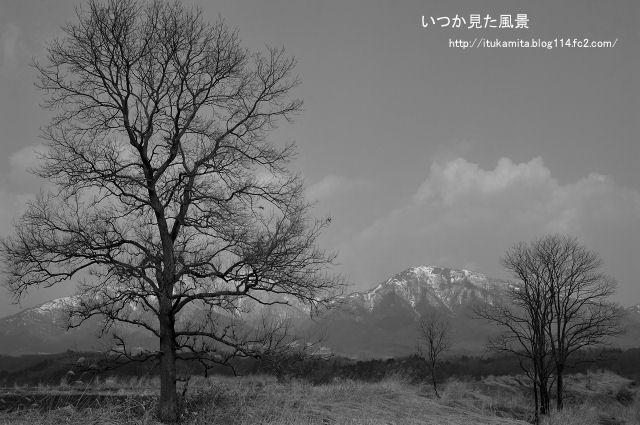 DS7_6514wi-s.jpg