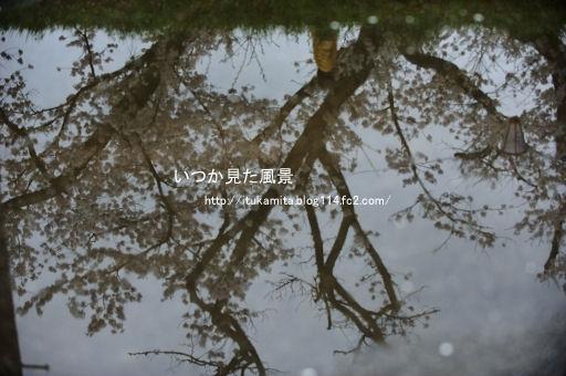 DS7_6752ri-ss.jpg