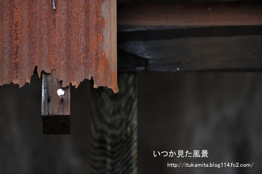 DS7_6772ri-ss.jpg