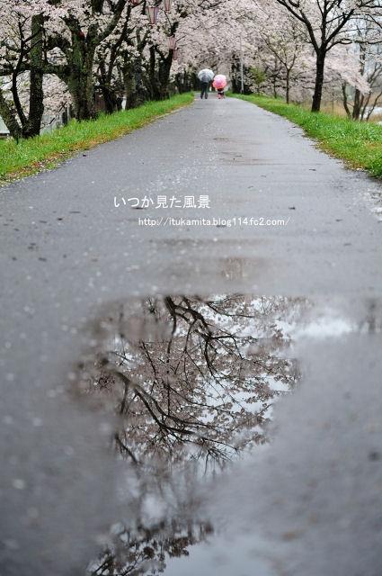 DS7_7050ri-s.jpg
