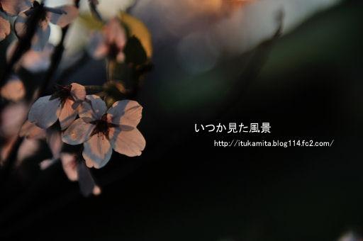 DS7_7623ri-ss.jpg